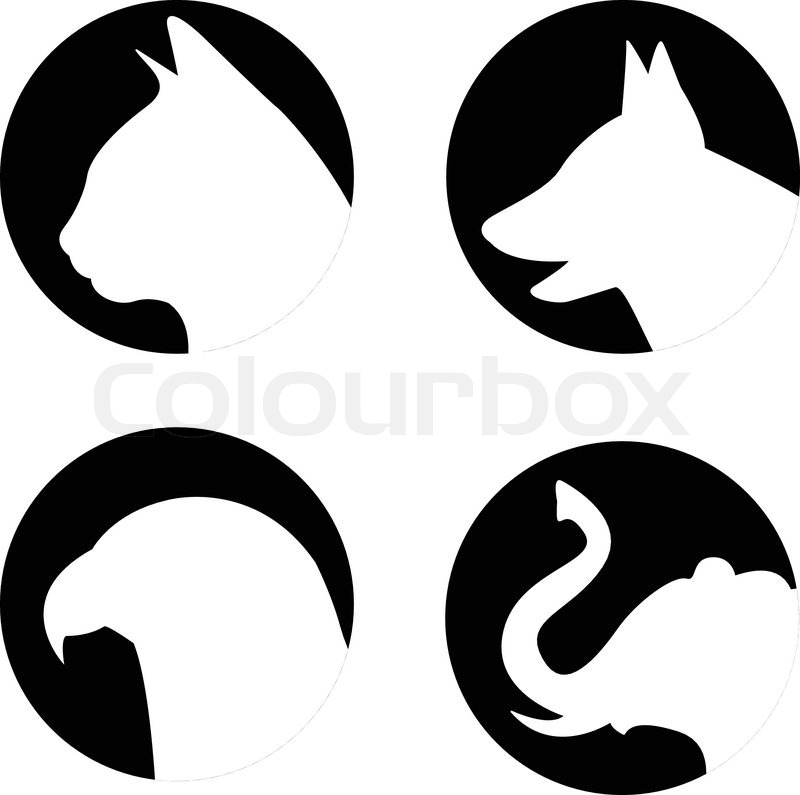 800x795 Cat, Dog, Eagle And Elephant In Vector Stock Vector Colourbox