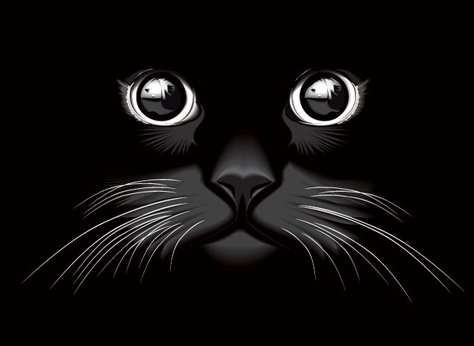 680x497 Free Black Cat Eyes Vector Background (Free) Psd Files, Vectors