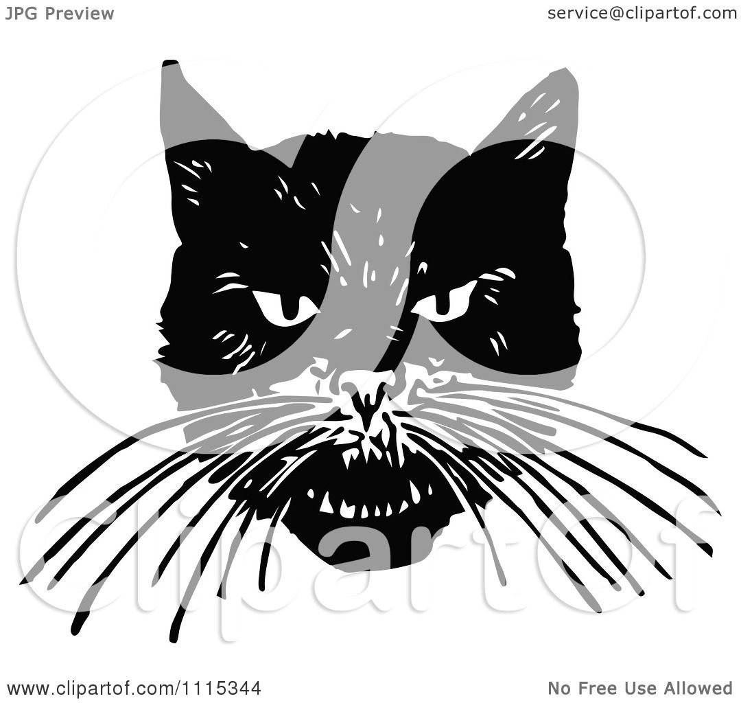 1080x1024 The Angry Orange Cartoon Cat Download Royalty Free Vector File Eps