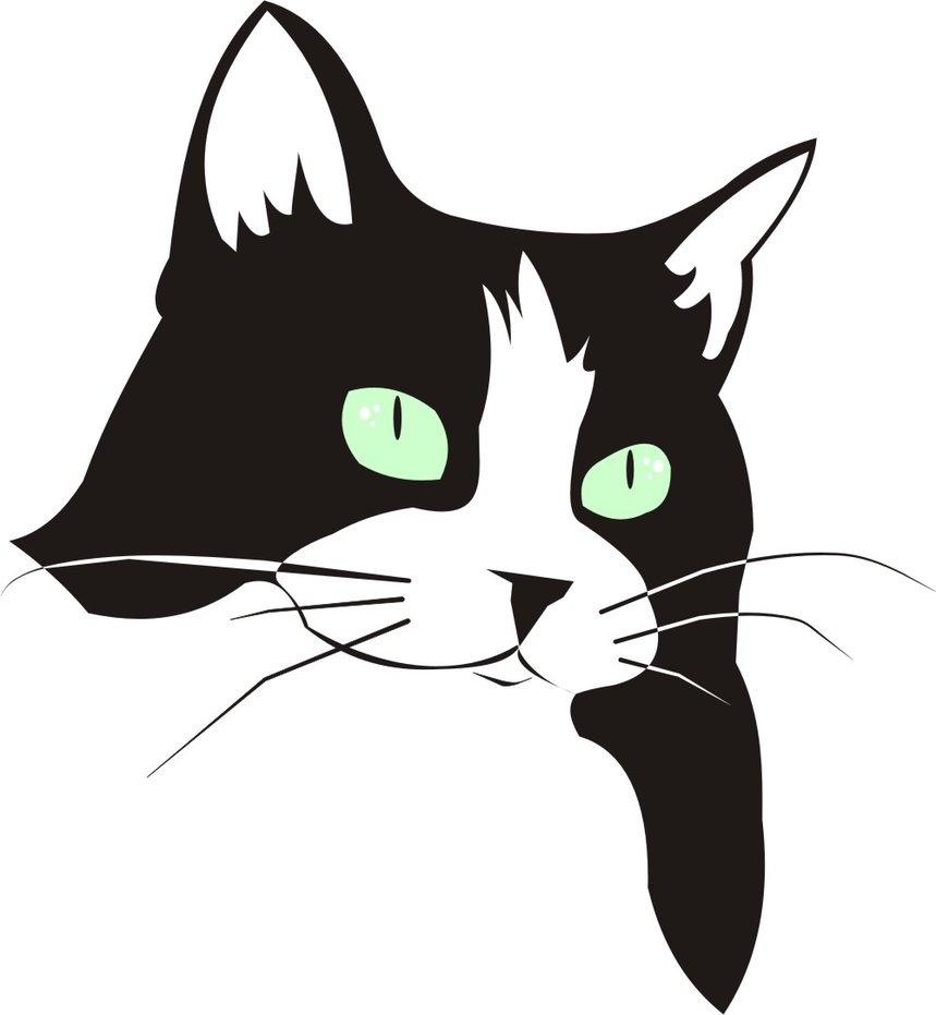 859x931 Cat Face By Dccanim