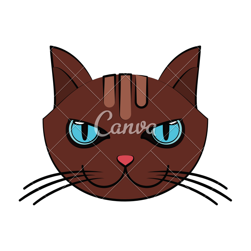 800x800 Cat Face Vector Icon Illustration