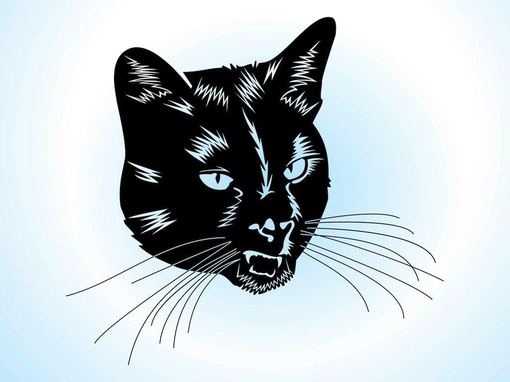 1024x768 Cat Head Vector Art Amp Graphics