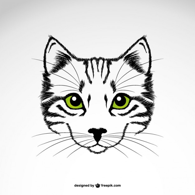 626x626 Cat Head With Green Eyes Vector Free Download