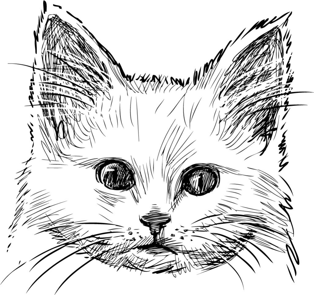 1024x961 Hand Drawn Cat Head Vector Design Vector Free Download Eps Files