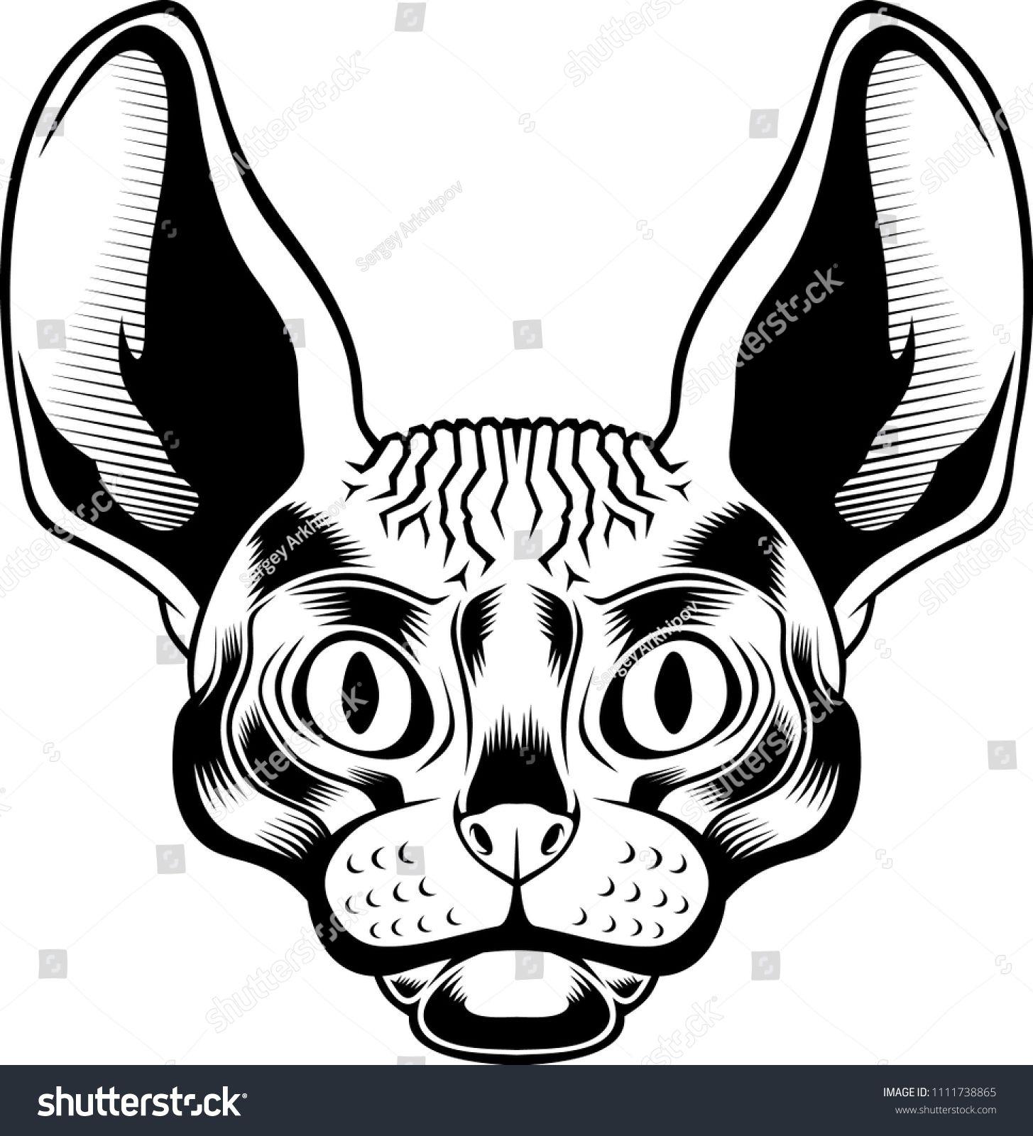 1455x1600 Sphinx Cat Head. Vector Illustration. Wild Cat