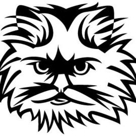 270x270 Cat