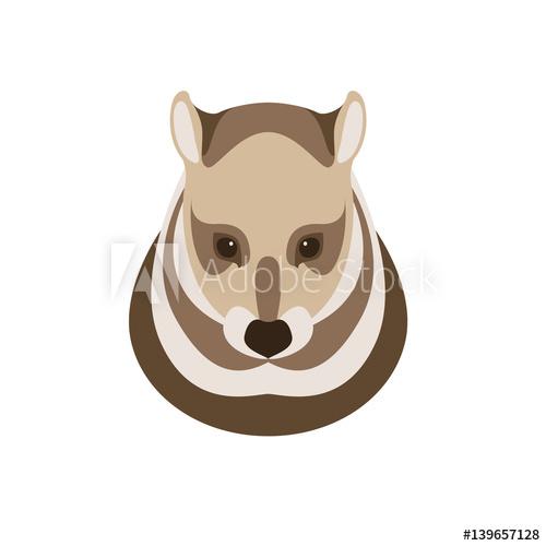 500x500 Civet Cat Head Vector Illustration Style Flat
