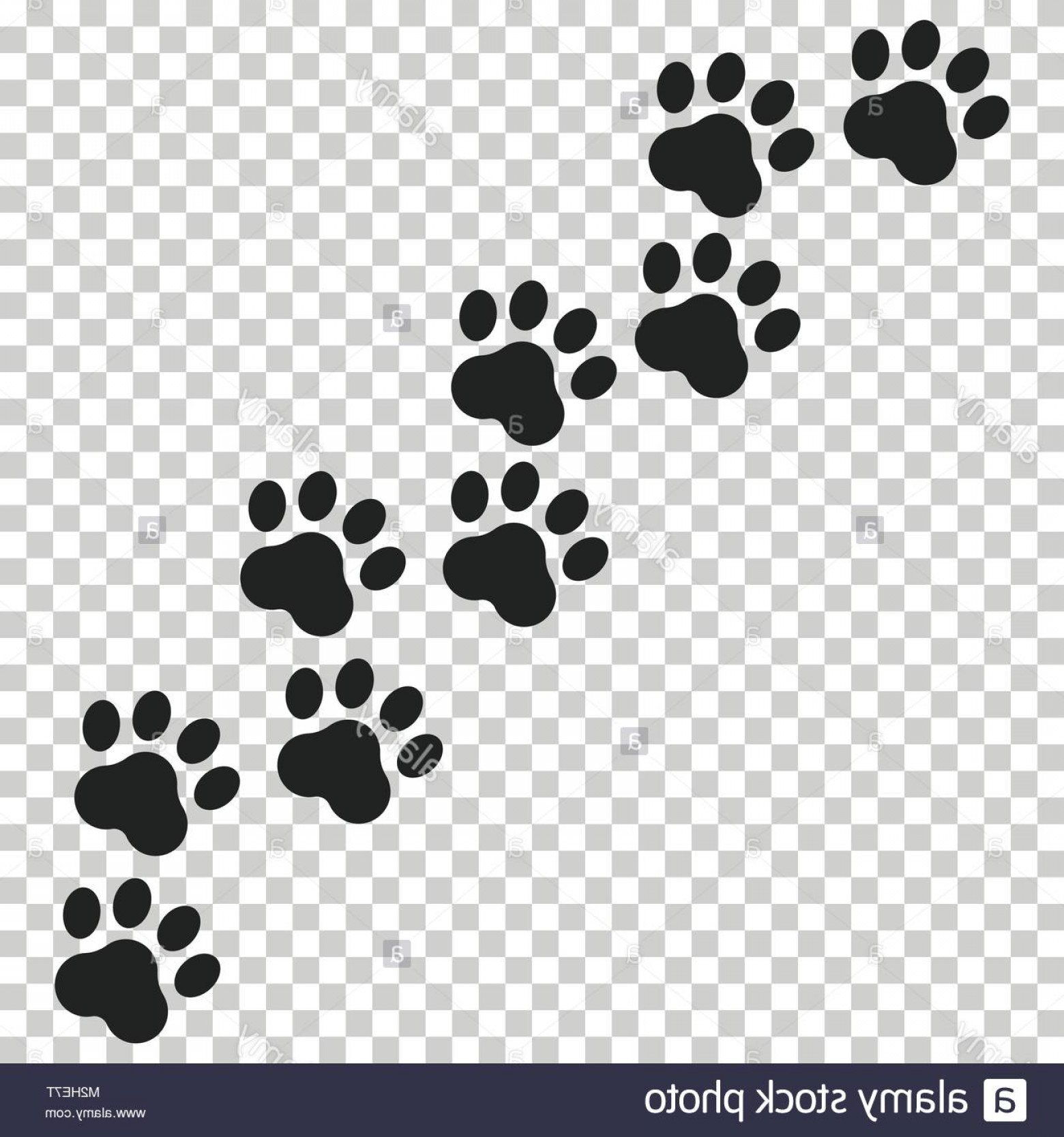 254155c4a16c 1560x1668 Stock Photo Paw Print Vector Icon Dog Or Cat Pawprint Illustration