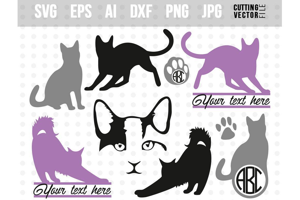 1160x773 Cat Vector Bundle