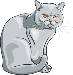 252x260 Cats Vector Graphics To Download