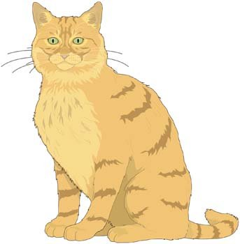 343x350 Free Cat Vector 9 Clipart And Vector Graphics