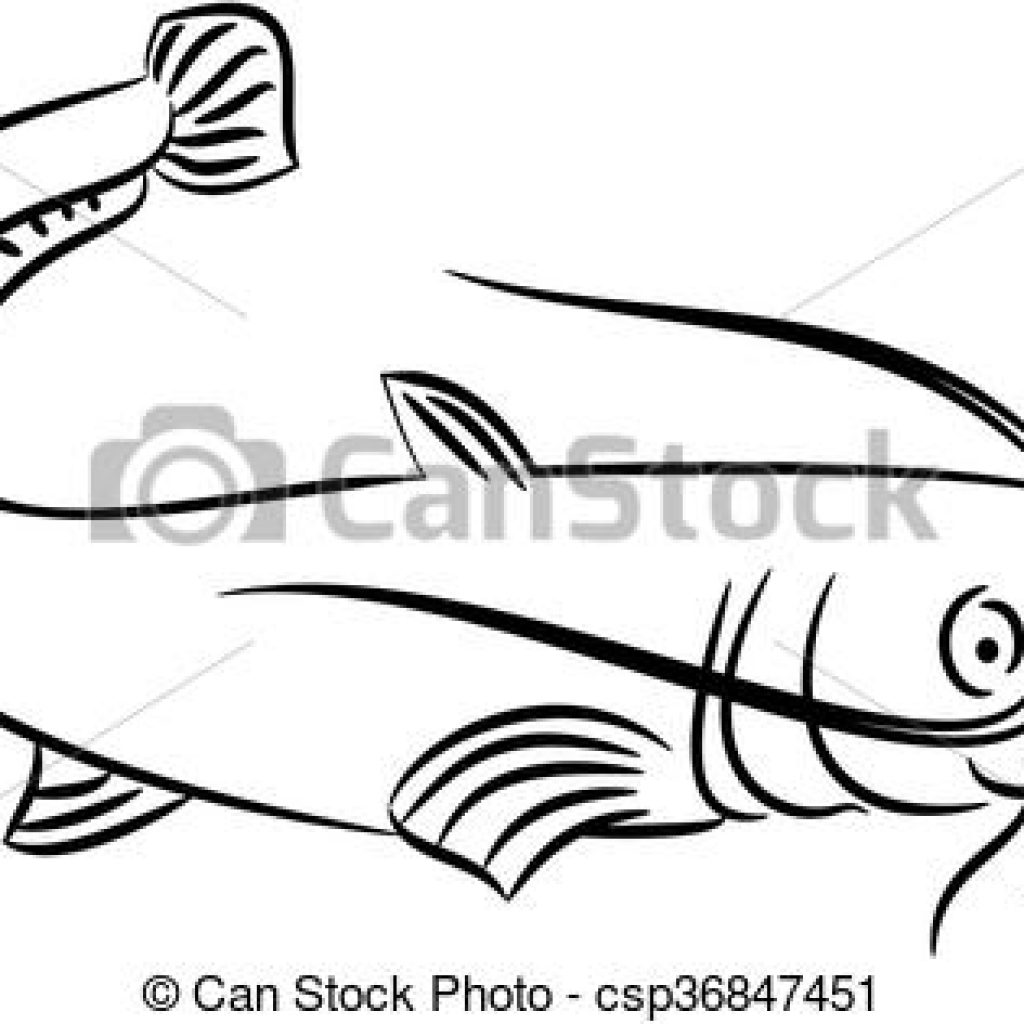 1024x1024 Catfish Clipart Illustration Of A Vector Free Snowman