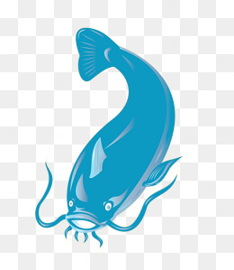 260x299 Catfish Png Images Vectors And Psd Files Free Download On Pngtree