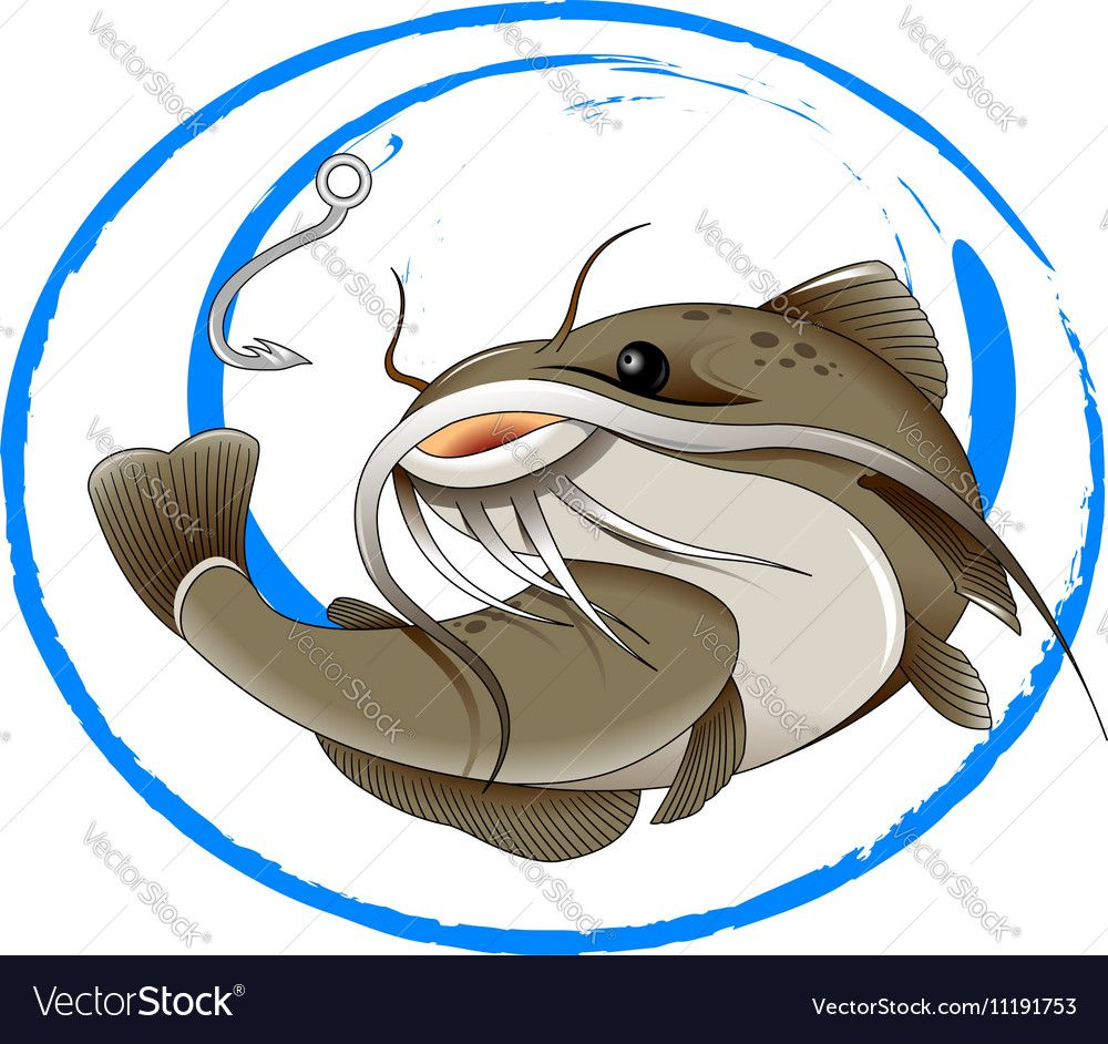 1000x942 Fishing For Catfish Vector Image By Sababa66 Vector