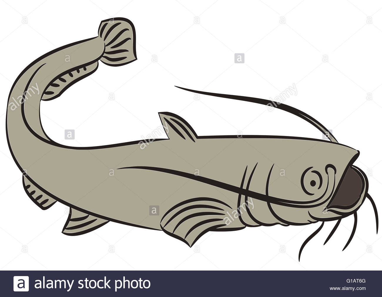 1300x1009 15 Catfish Clipart Draw For Free Download On Mbtskoudsalg
