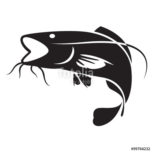 500x500 Graphic Catfish, Vector Stock Image And Royalty Free Vector Files