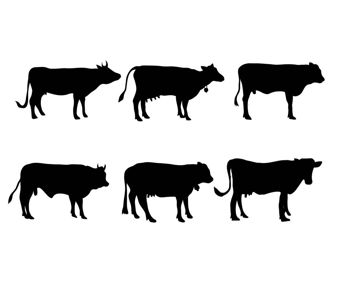 1136x936 Cattle Vector Set Vector Art Amp Graphics