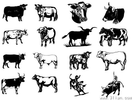 534x408 Black And White Cow Vector Free Vector In Adobe Illustrator Ai