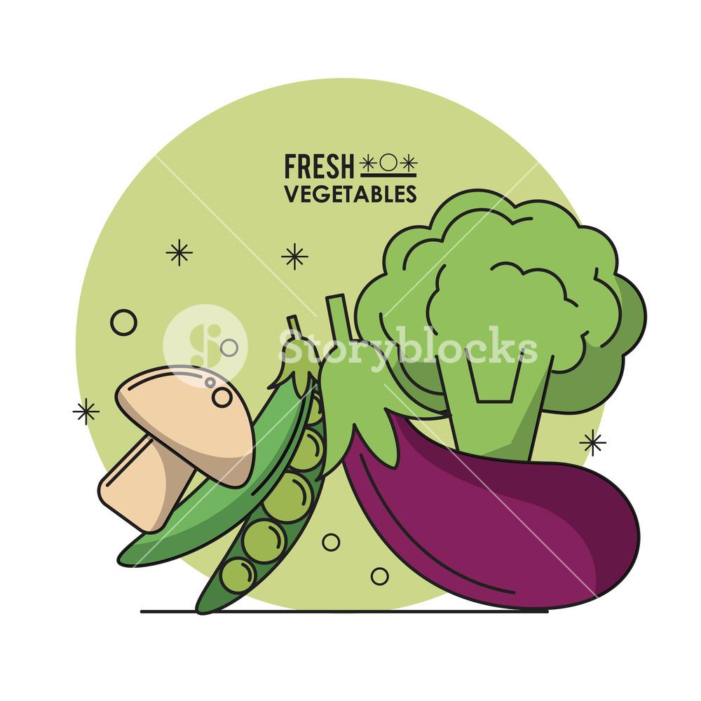 1000x1000 Colorful Poster Fresh Vegetables Mushroom Peas Eggplant And