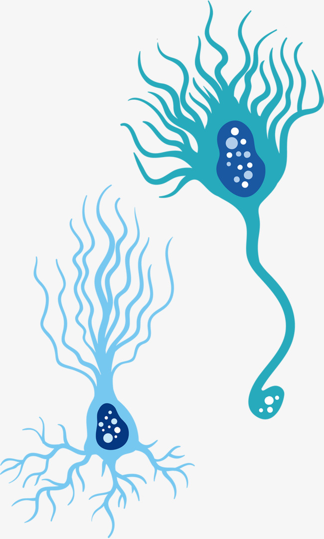 650x1081 Blue Cute Nerve Cell Vector, Blue Vector, Medical Cells, Human