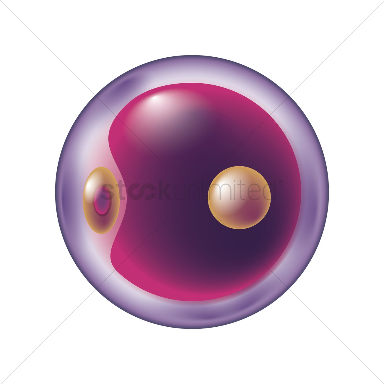 1300x1300 Stem Cell Vector Image