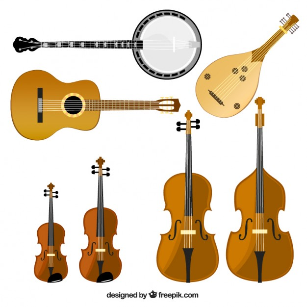 626x626 Cello Vectors, Photos And Psd Files Free Download