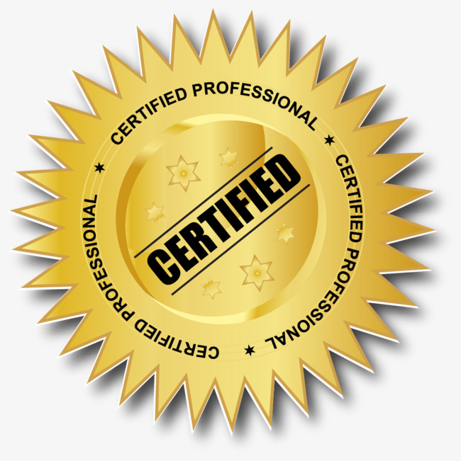 650x651 Vector Certified Professional Badge, Authenticate, Badge