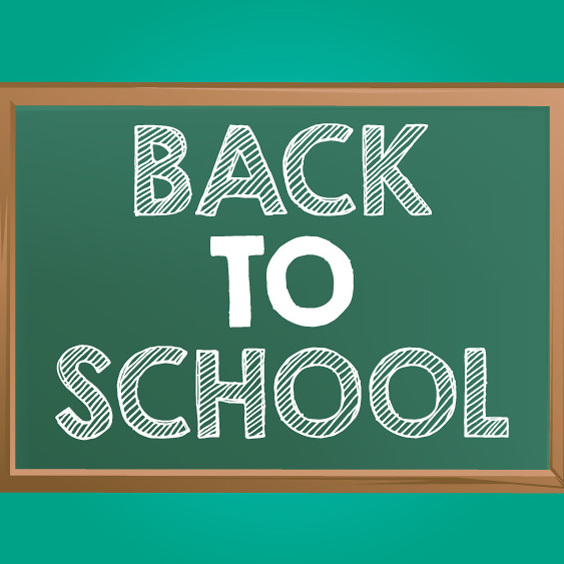 564x564 Free Back To School Chalkboard Vector Free Vector Download 202501