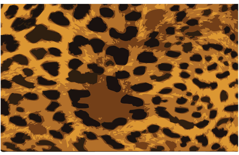800x521 Free Download Of Pattern Animal Print Vector Graphics And