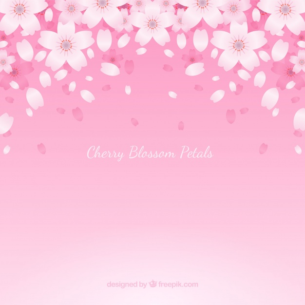 626x626 Background With Cherry Blossom Petals Vector Free Download