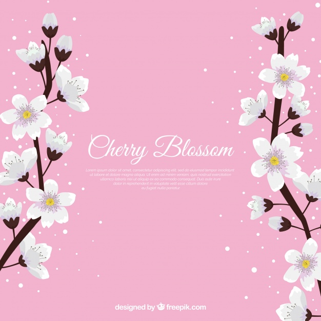 626x626 Cherry Blossom Background In Flat Style Vector Cherry Blossom
