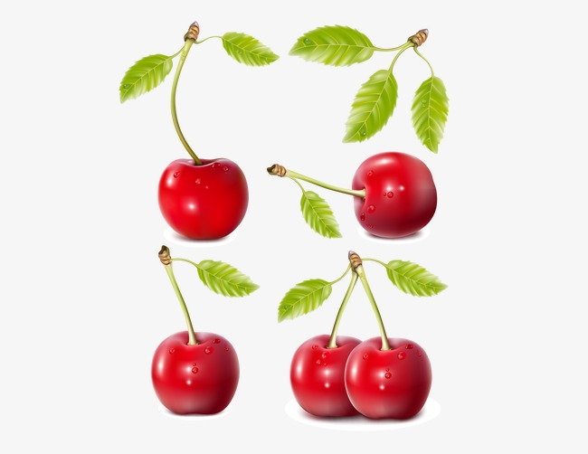 650x502 Cherry, Vivid Red Cherries, Cherry Vector Png And Vector For Free