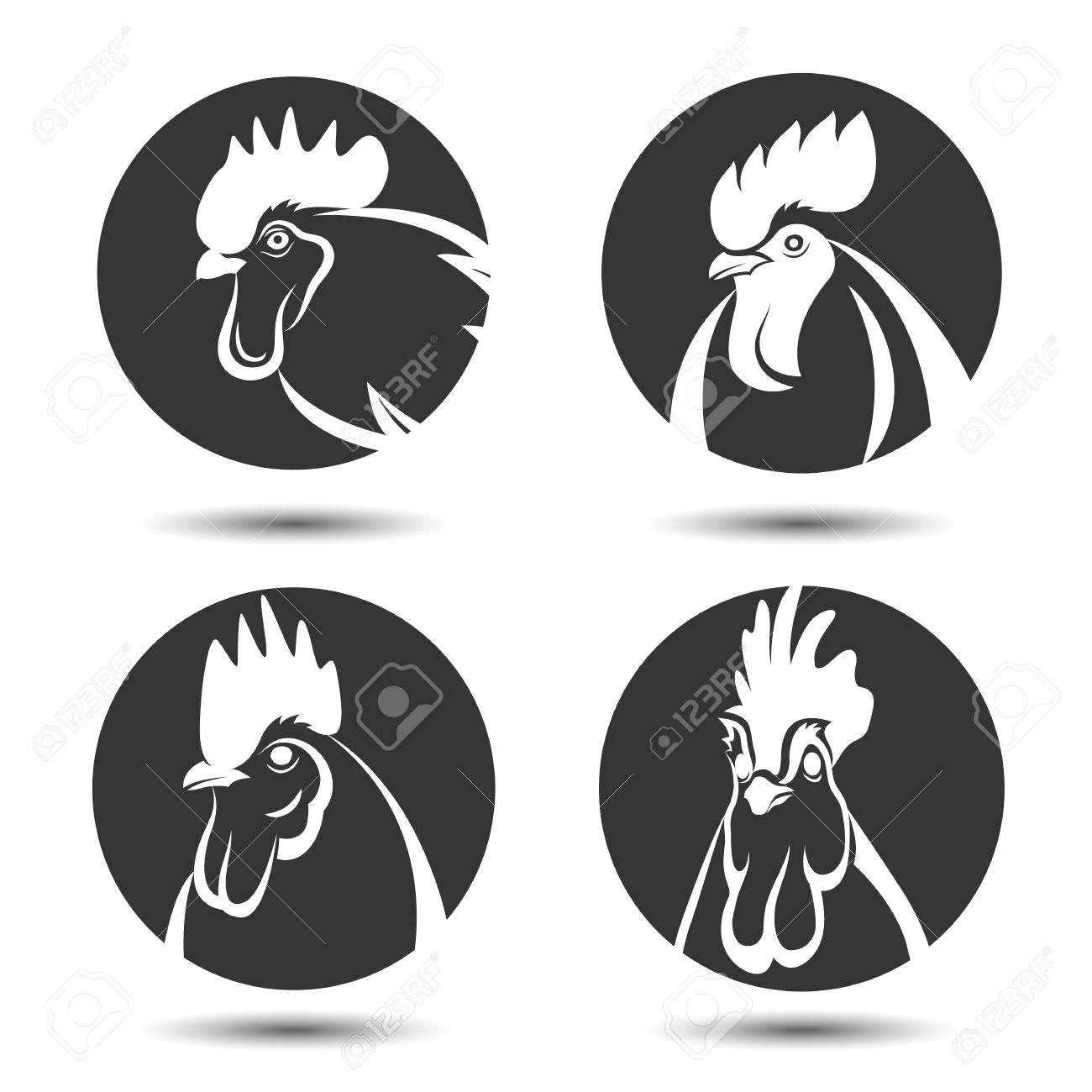 1300x1300 60099077 Labels And Symbol Set Of Chicken Head Vector Illustration