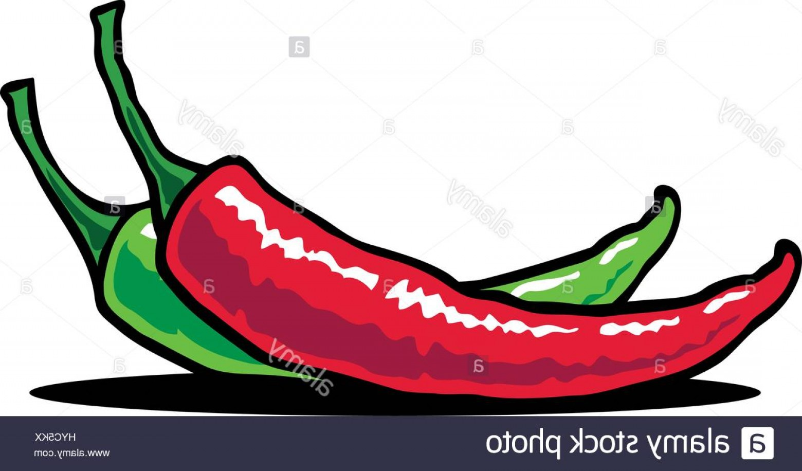 1560x916 Stock Photo Hot Chili Vector Illustration Of A Chili Pepper In