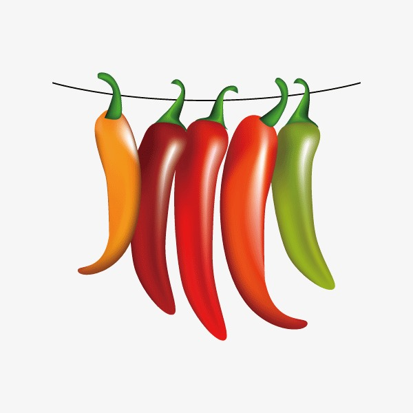 600x600 Chili,vegetables,vector, Vegetables, Chili Vector, Vegetables