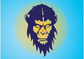 285x200 Chimpanzee Vector Free Vector Graphic Art Free Download (Found 19