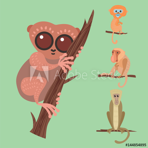 500x500 Different Breads Monkey Character Animal Wild Zoo Ape Chimpanzee