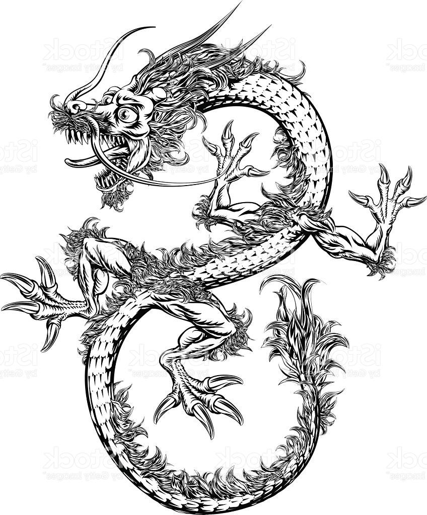 Chinese Dragon Vector at GetDrawings com | Free for personal use