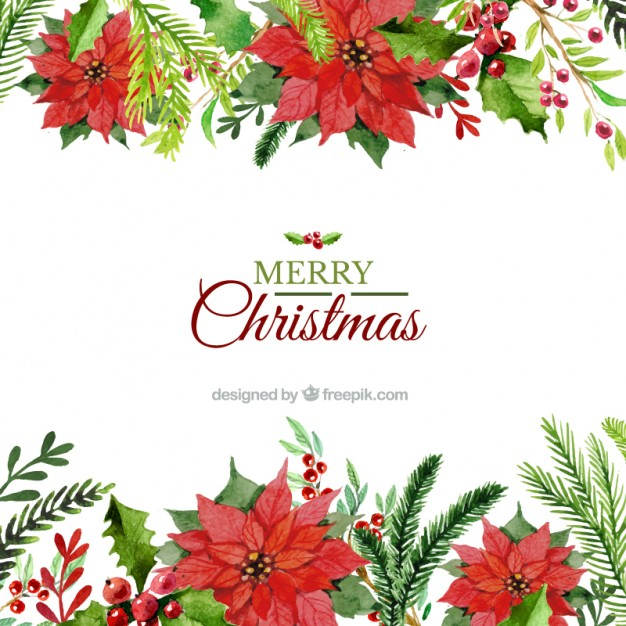 626x626 Free Christmas Flowers Download