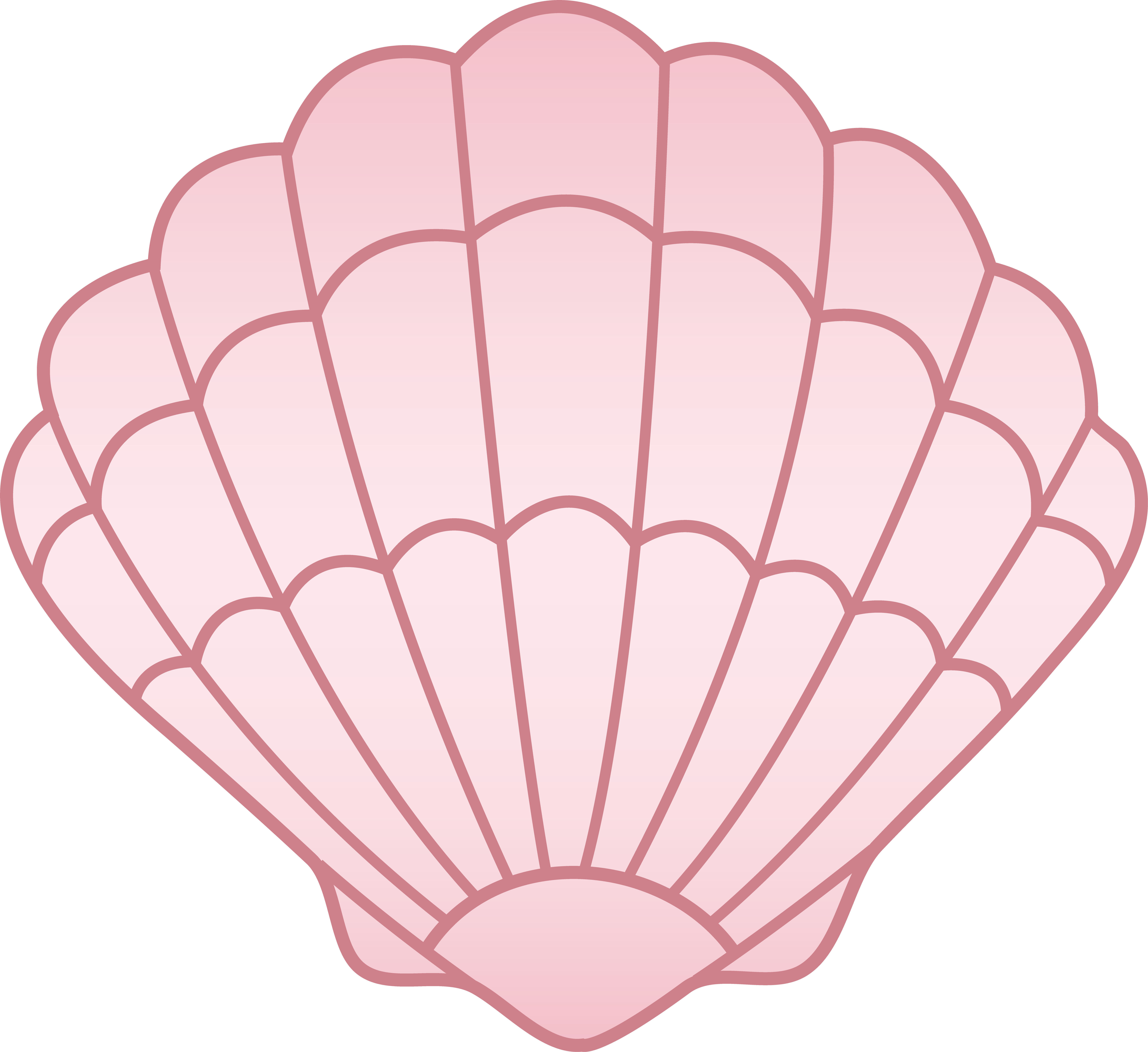 Clam Shell Vector
