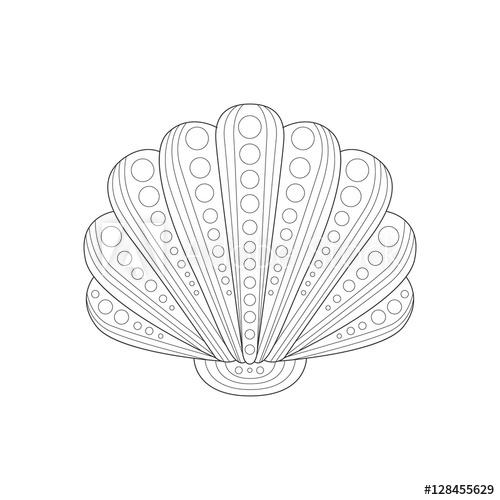 500x500 Clam Shell Sea Underwater Nature Adult Black And White Zentangle
