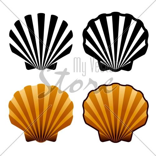 500x500 Vector Sea Shells