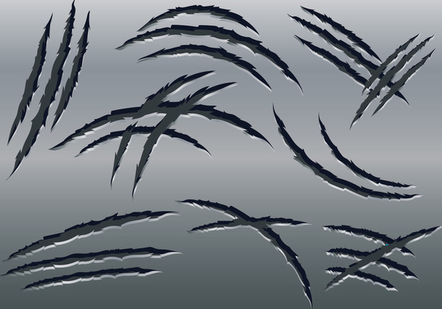 632x443 Claw Scratch Marks Vector Free Vector Download 426877 Cannypic