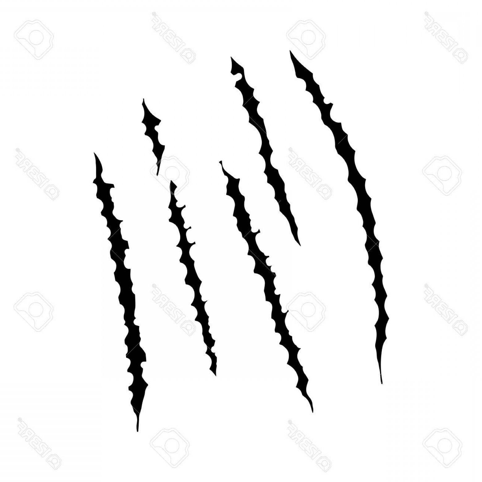1560x1560 Photostock Vector Animal Claws Scratches Vector Illustration