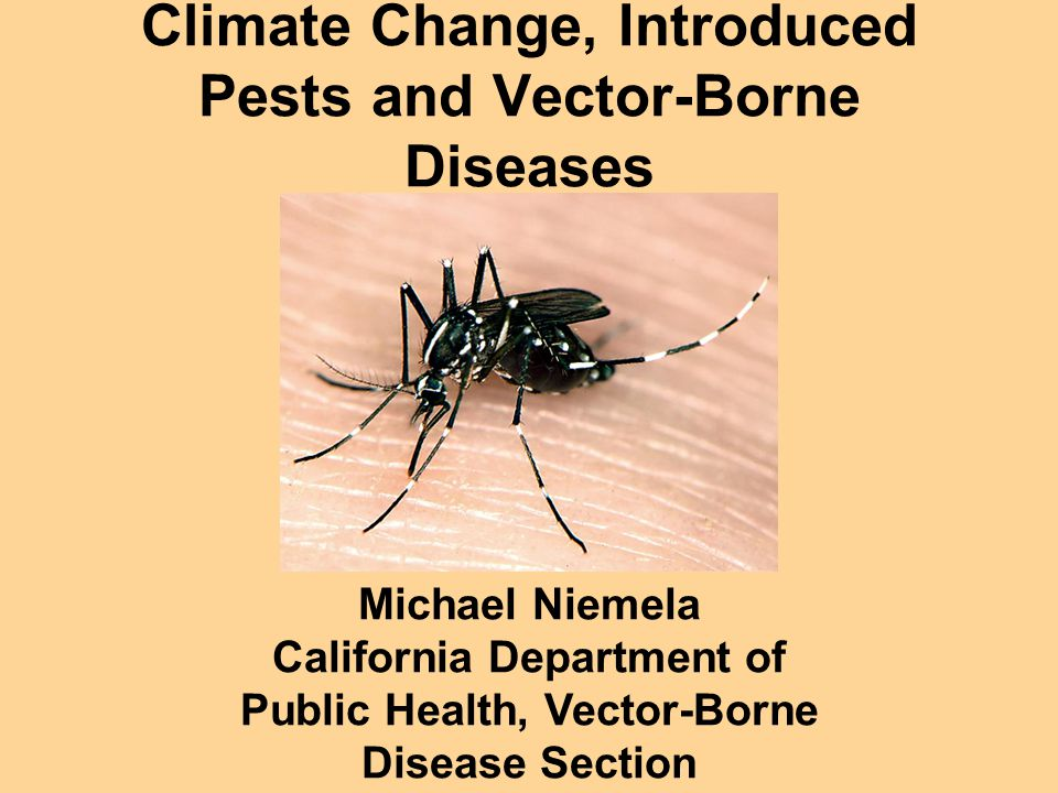 960x720 Climate Change, Introduced Pests And Vector Borne Diseases