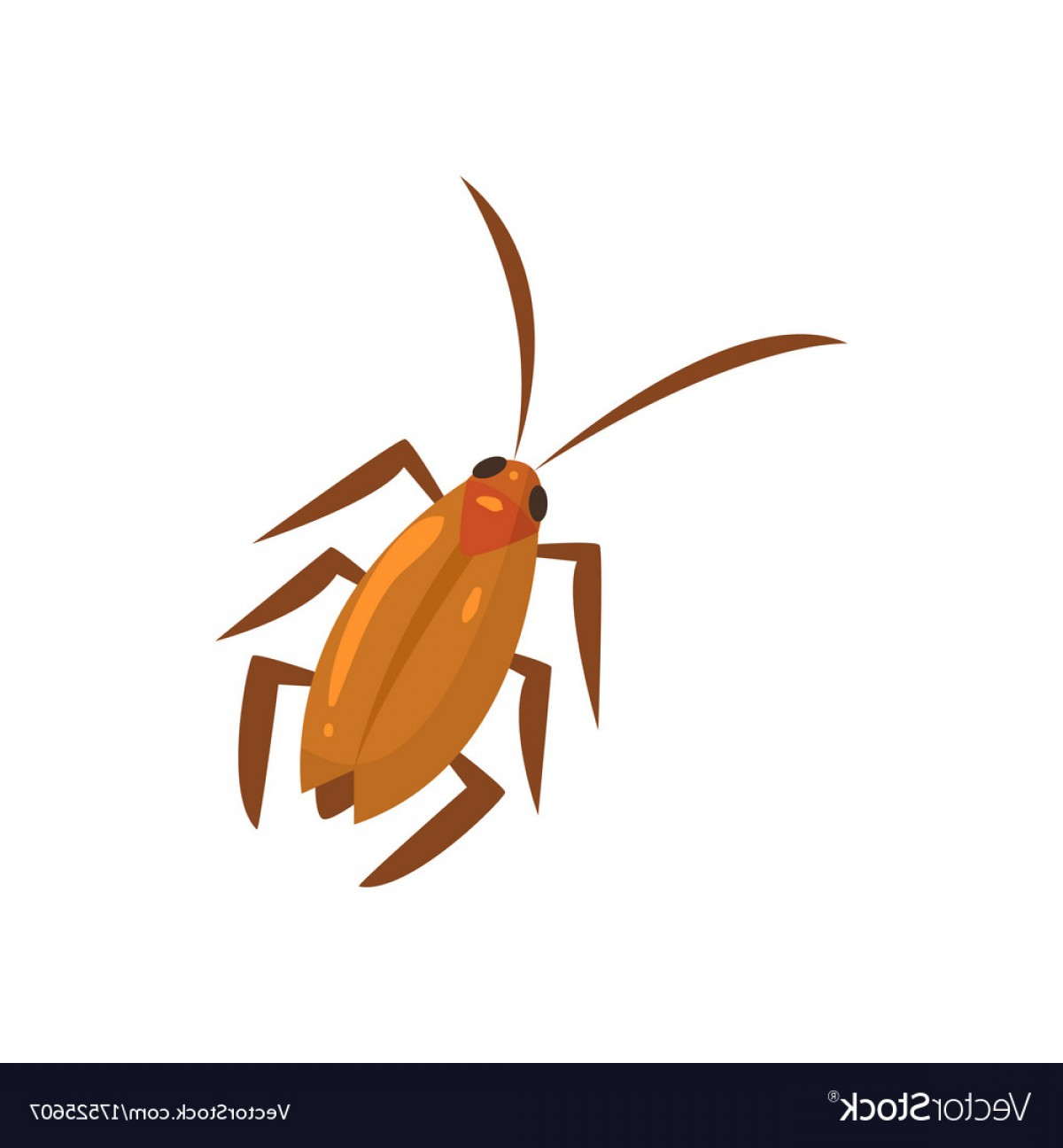 1200x1296 Brown Cockroach Insect Cartoon Vector Sohadacouri