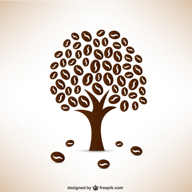 626x626 Coffee Beans Tree Vector Free Download