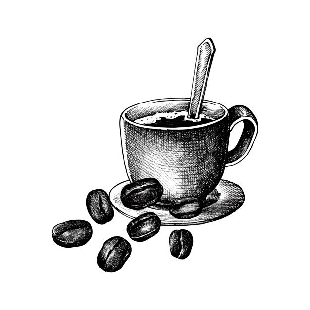 626x626 Hand Drawm Coffee And Coffee Bean Vector Free Download