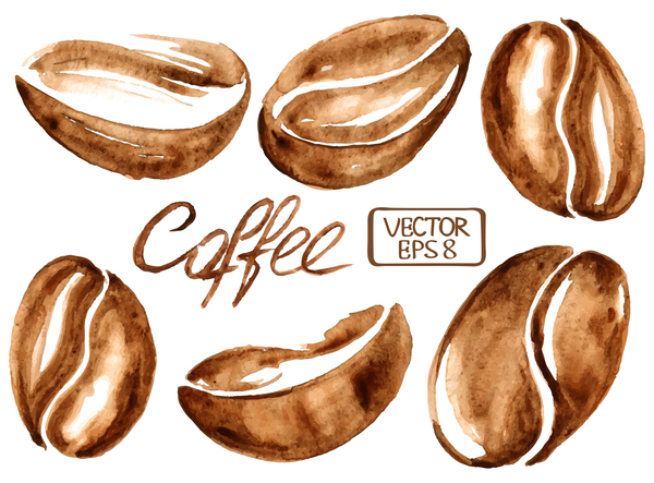 600x443 Hand Drawn Watercolor Coffee Beans Vector Free Download