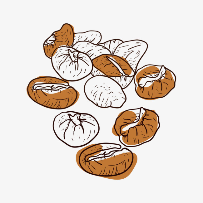 650x651 Vector Watercolor Coffee Beans, Vector Coffee Beans, Watercolor